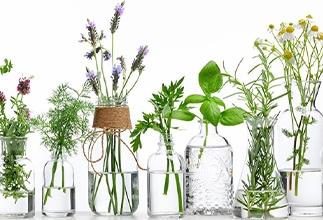 Kärlek till aromaterapi